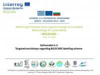 Report on the Targeted Workshops (Deliverable 5.3)